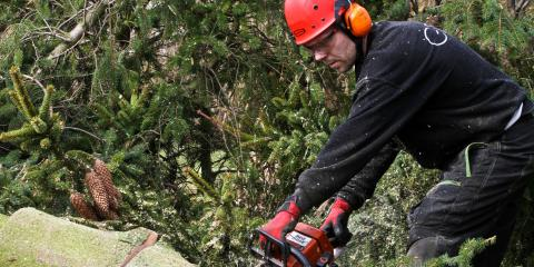 3 Tips for Using Power Tools Safely, Dothan, Alabama