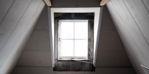 Pest Control Attorneys Explain When Termite Damage Qualifies for a Claim, Dothan, Alabama