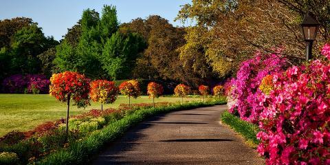 A Guide to Alabama Pests, Dothan, Alabama