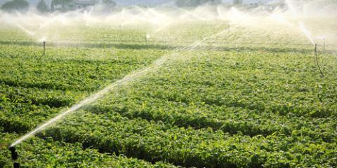 3 Ways to Maximize Irrigation With Water Well Installation, Ottawa, Wisconsin