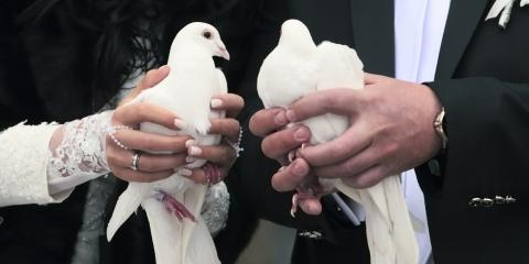 Why You Should Release Doves at Your Event, Covington, Kentucky