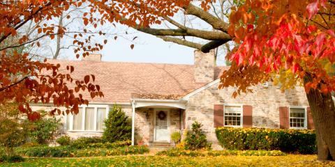 Preventative Termite Control Tips to Protect Your Home This Fall, Oxnard, California