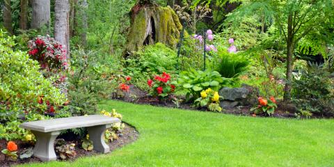 5 Reasons Your Landscape Design Should Include Trees & Shrubs, Long Valley, New Jersey