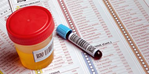 Drug Testing: Learn Fact From Fiction With Phoenix's Premier Laboratory, Phoenix, Arizona