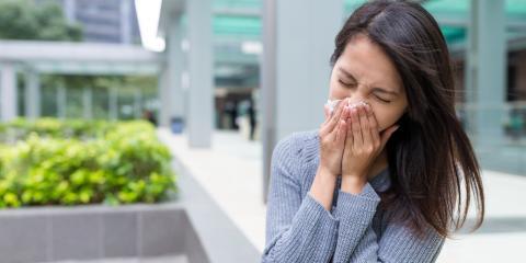 5 Tips From Cedar Hill's Best Drugstore for Avoiding Sickness This Spring, Cedar Hill, Missouri