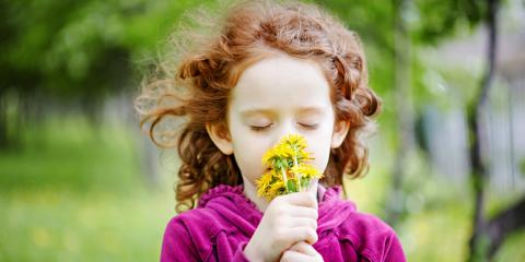 4 Ways to Treat Seasonal Allergies, Archdale, North Carolina