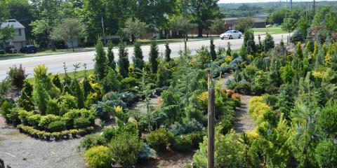 30/50 SEPTEMBER SALE AT LAKEVIEW GARDEN CENTER!, Fairfield, Ohio