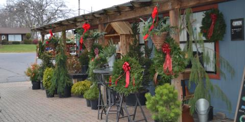 LAKEVIEW GARDEN CENTER CHRISTMAS TREE BLOW-OUT!, Fairfield, Ohio