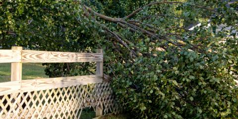 3 Tips for Cleaning Up Your Yard After a Storm, Kerrville, Texas