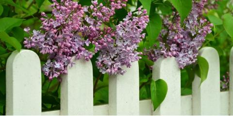 How to Choose a Fence That's Perfect for Your Home, Mount Crawford, Virginia