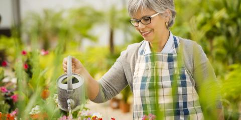 3 Signs You're Overwatering Your Plants, Anchorage, Alaska
