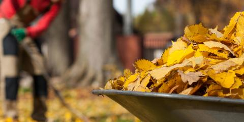 5 Gutter Issues That Happen in Fall, New Haven, Connecticut