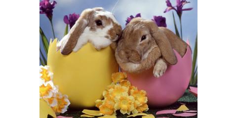Happy Easter ! , Fridley, Minnesota