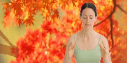 Tao Yoga and Tai Chi, Women's Health Services, Health and Beauty, New York City, New York