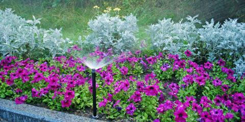 Planting a Garden? 4 Essential Considerations, Elberta, Alabama