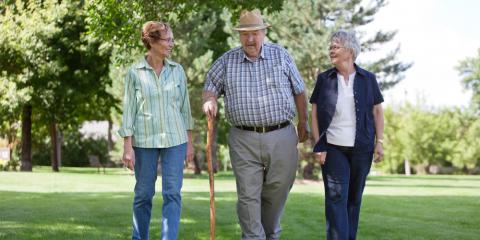 4 Summer Activities to Do With Loved Ones in Elder Care, New City, New York
