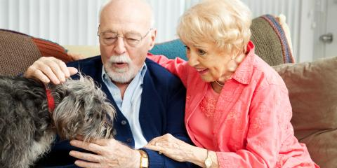 How Seniors Benefit from Owning A Pet, St. Louis, Missouri