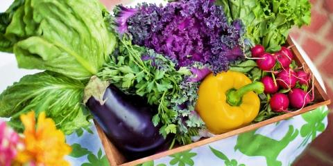 Elderly Care Tips: 3 Benefits of Gardening for Seniors, Milwaukee, Wisconsin