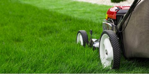 3 Reasons Your Lawn Mower Won't Start, Elk River, Minnesota