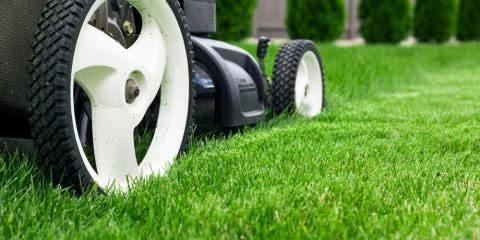 3 Lawn Maintenance Basics You Need to Know, Elko, Nevada