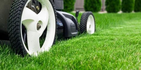 3 Lawn Maintenance Basics You Need to Know, Elko, Nevada