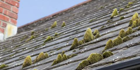3 Ways to Protect Residential Roofing From Damage, Amherst, Ohio