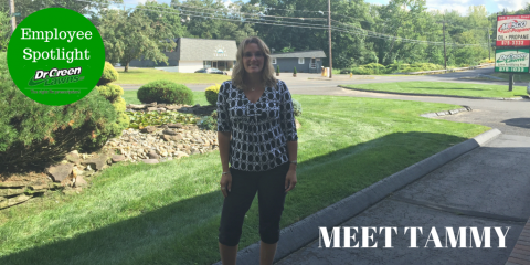 Get to Know Tammy Bastenbeck, Part of The Expert Lawn Care Team at Dr. Green Lawns, Wolcott, Connecticut