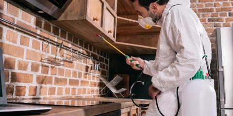 3 Qualities to Look for in an Exterminator, Englewood, Ohio