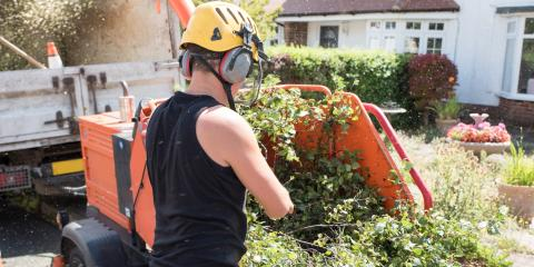 3 Reasons to Rent a Wood Chipper, Hamilton, Ohio