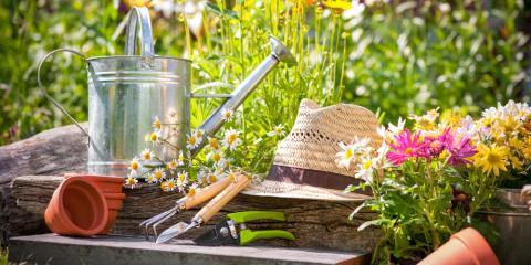 Erlanger Florists Share 3 Tips to Prepare Your Garden for Spring, Erlanger, Kentucky