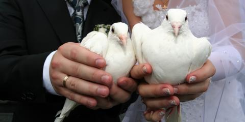 4 Steps to Create the Perfect Wedding Dove Release, Covington, Kentucky