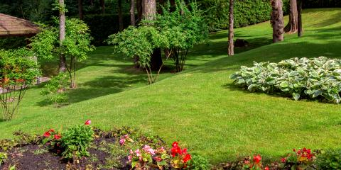 3 Signs Your Yard Needs Soil Erosion Control, Enterprise, Alabama