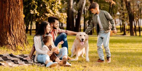 4 FAQ About Estate Planning, Waynesboro, Virginia