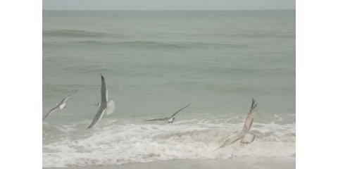 "World Peace thru ""live stream"" of Heart Opening Yoga on the Beach, Naples, Florida"