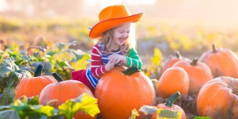 4 Tips for Choosing the Perfect Pumpkin, Babylon, New York