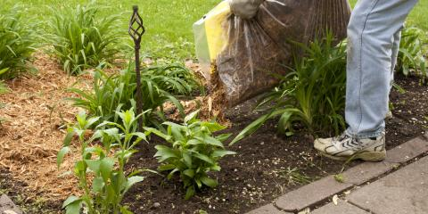 3 Beginner's Tips for Using Mulch, Scottsville, New York