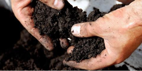 7 Reasons to Buy Topsoil From Your Local Excavating Company, Kodiak, Alaska