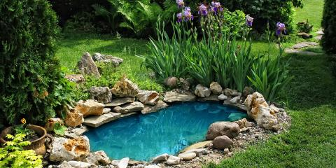 3 Reasons to Install a Pond on Your Property, Ogema, Wisconsin
