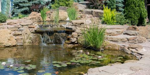 A Brief Guide to Building the Perfect Backyard Pond , Bluefield, West Virginia