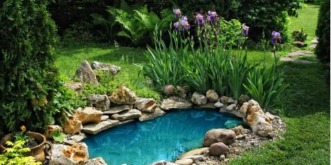 3 Factors to Consider Before Adding a Pond to Your Property, New Windsor, New York