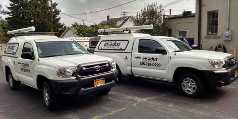 Exodus Exterminating, Inc., Exterminators, Services, Rochester, New York
