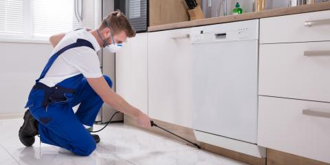 How to Prepare for Your Pest Control Treatment, Cookeville, Tennessee