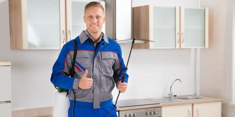 Top 3 Things to Look for in a Pest Control Service, Las Vegas, Nevada