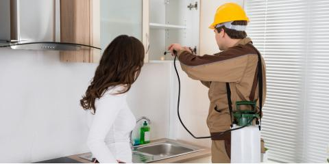 Why You Should Leave Pest Management to the Experts, Roxbury, New Jersey