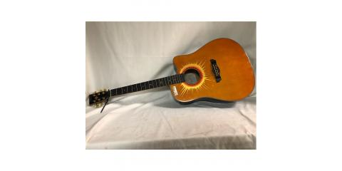 ESTEBAN MUSIC Electric-Acoustic Guitar CORAL SUN CUTAWAY, Tampa, Florida
