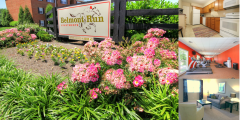 Belmont Run Apartments, Apartment Rental, Real Estate, Lexington, Kentucky