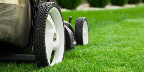 3 Essential Summer Lawn Care Tips, Fairbanks, Alaska