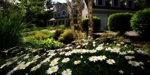 5 Summer Projects to Boost Your Real Estate's Curb Appeal, Fairborn, Ohio