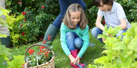 How to Cultivate Your Children's Interest in Gardening, Fairfield, Ohio
