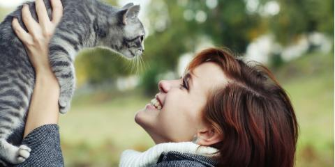 Fairport Pet Clinic Shares Helpful Advice for First-Time Cat Owners, Fairport, New York